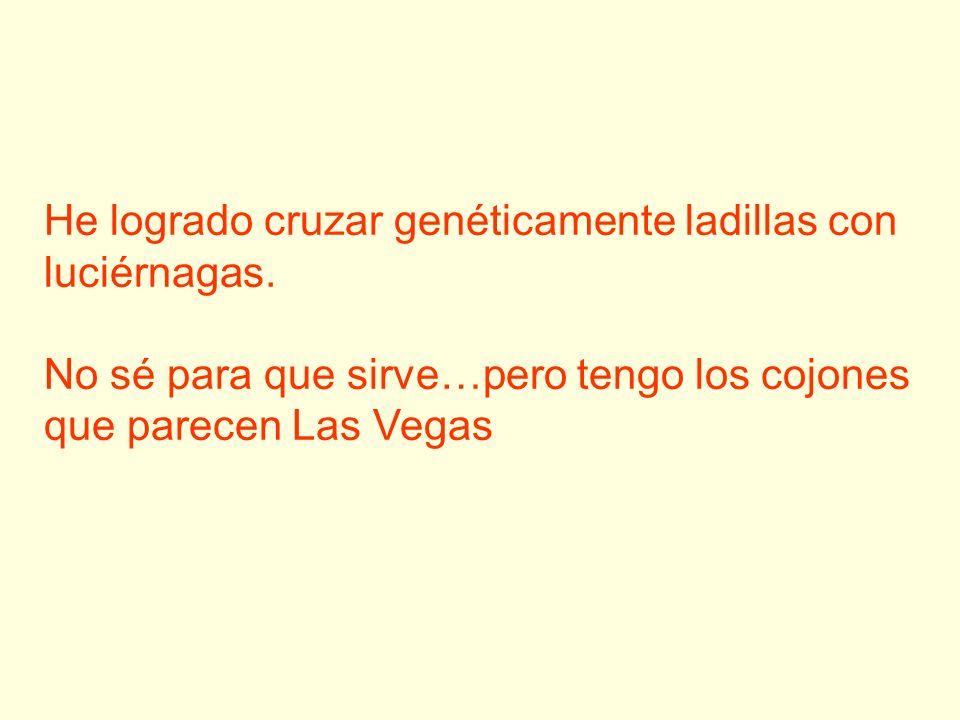 He logrado cruzar genéticamente ladillas con luciérnagas. No sé para que sirve…pero tengo los cojones que parecen Las Vegas