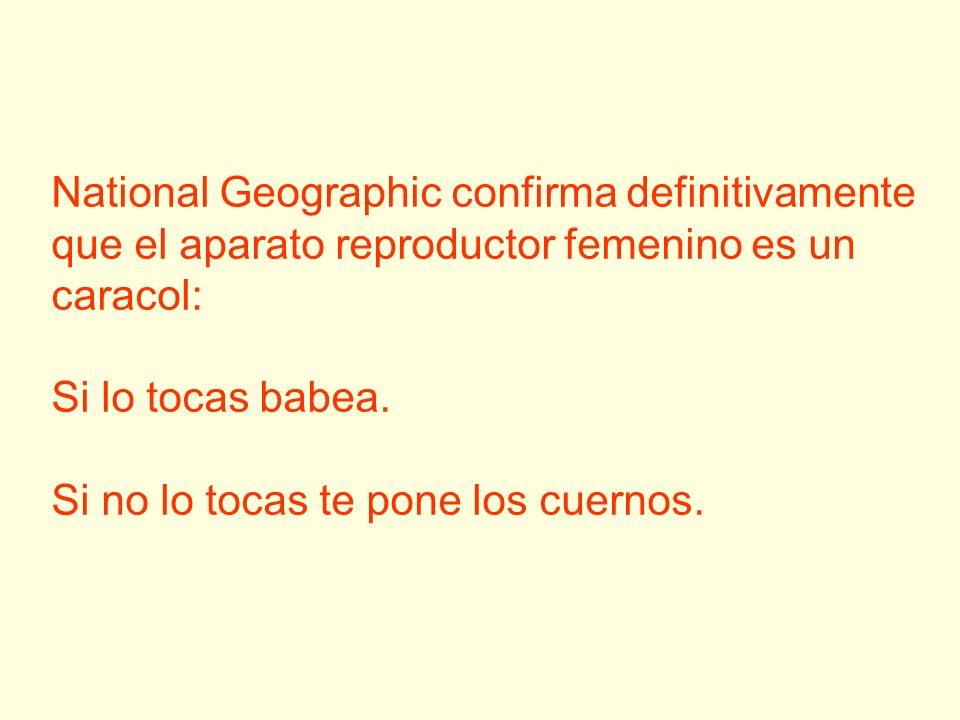 National Geographic confirma definitivamente que el aparato reproductor femenino es un caracol: Si lo tocas babea. Si no lo tocas te pone los cuernos.