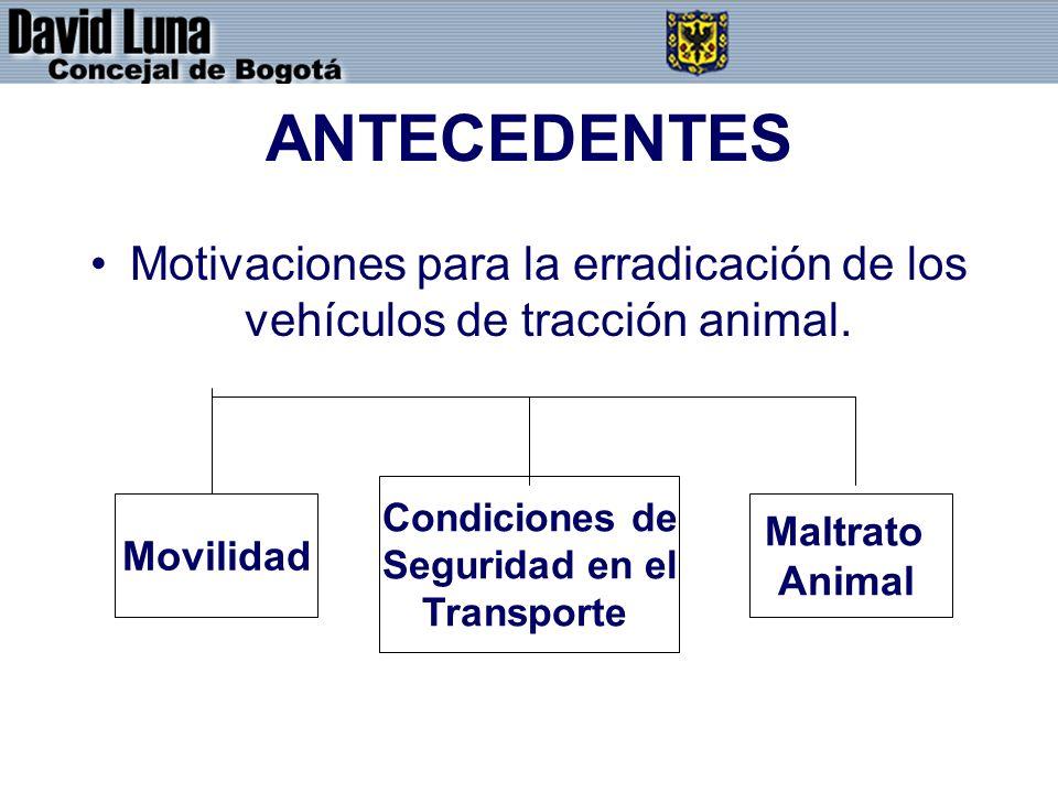ANTECEDENTES Motivaciones para la erradicación de los vehículos de tracción animal. Movilidad Condiciones de Seguridad en el Transporte Maltrato Anima