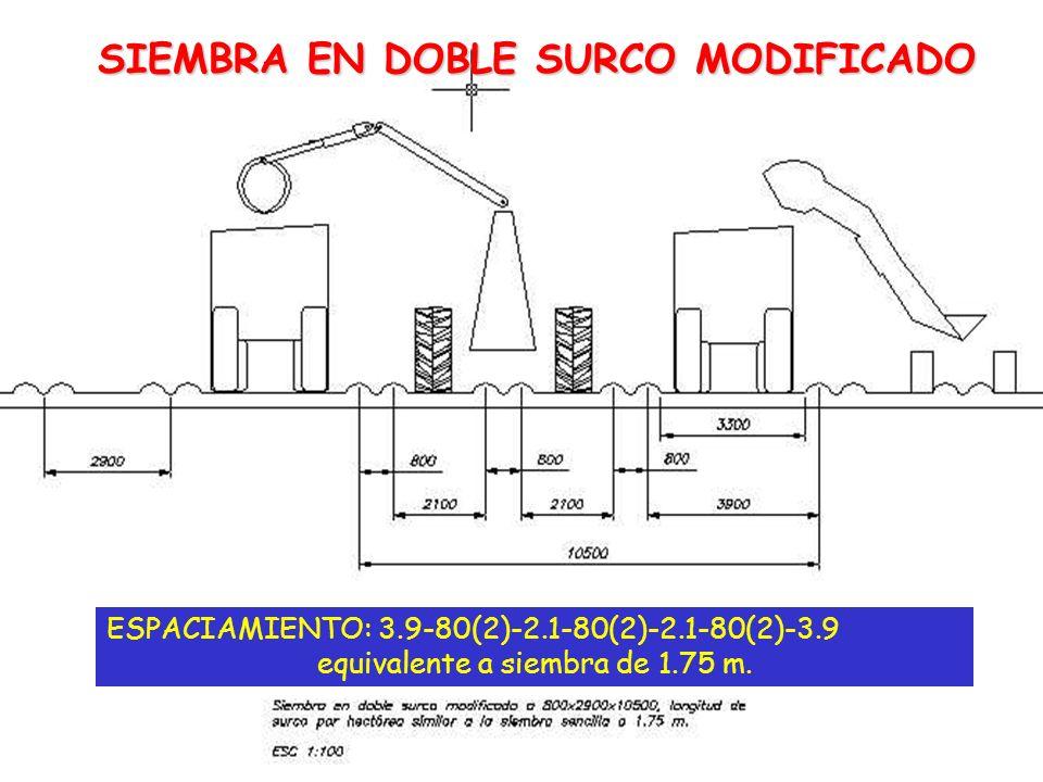 SIEMBRA EN DOBLE SURCO MODIFICADO ESPACIAMIENTO: 3.9-80(2)-2.1-80(2)-2.1-80(2)-3.9 equivalente a siembra de 1.75 m.