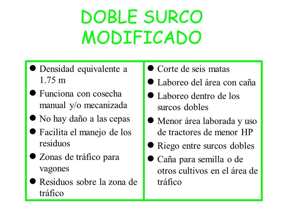 DOBLE SURCO MODIFICADO Densidad equivalente a 1.75 m Funciona con cosecha manual y/o mecanizada No hay daño a las cepas Facilita el manejo de los resi