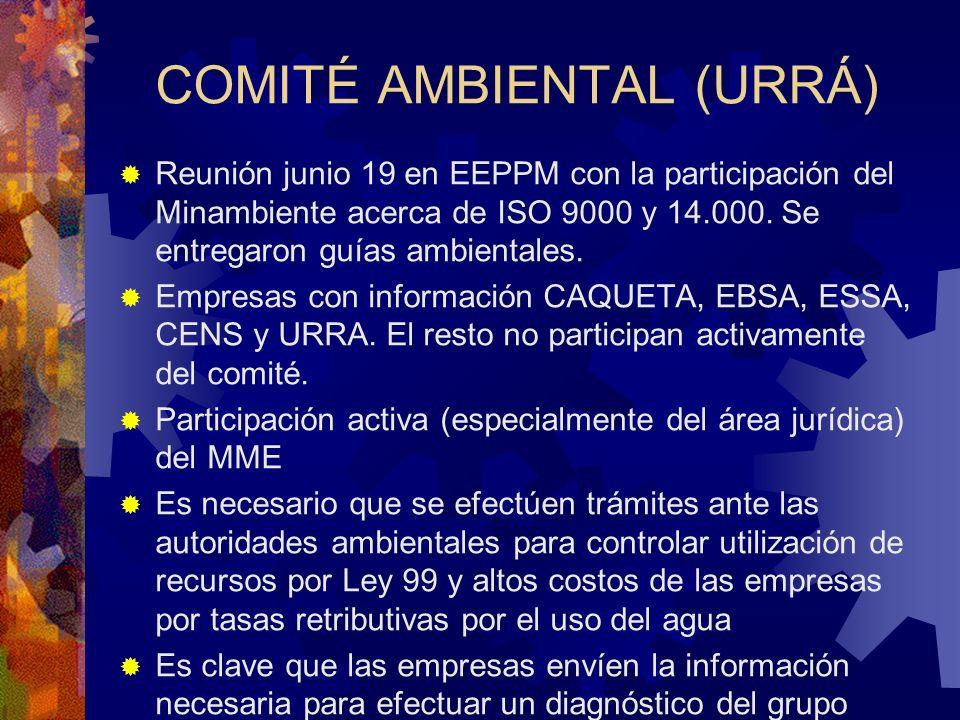 COMITÉ AMBIENTAL (URRÁ) Reunión junio 19 en EEPPM con la participación del Minambiente acerca de ISO 9000 y 14.000. Se entregaron guías ambientales. E