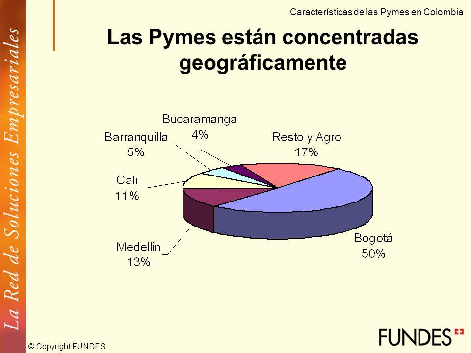 © Copyright FUNDES Participación sectorial de la Pyme Características de las Pymes en Colombia 47.750 Pymes
