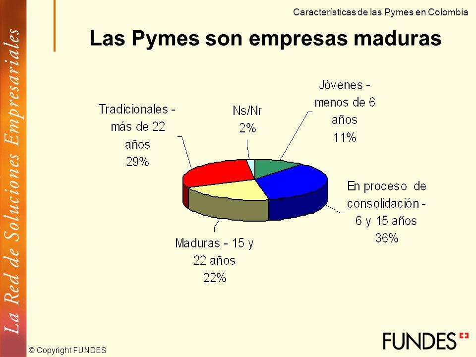 © Copyright FUNDES Características de las Pymes en Colombia Las Pymes están concentradas geográficamente