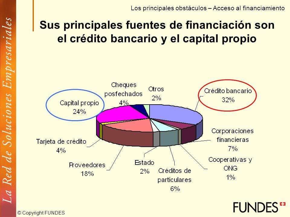 © Copyright FUNDES La Pyme no percibe condiciones especiales de líneas de crédito y considera deficiente la divulgación gubernamental Los principales