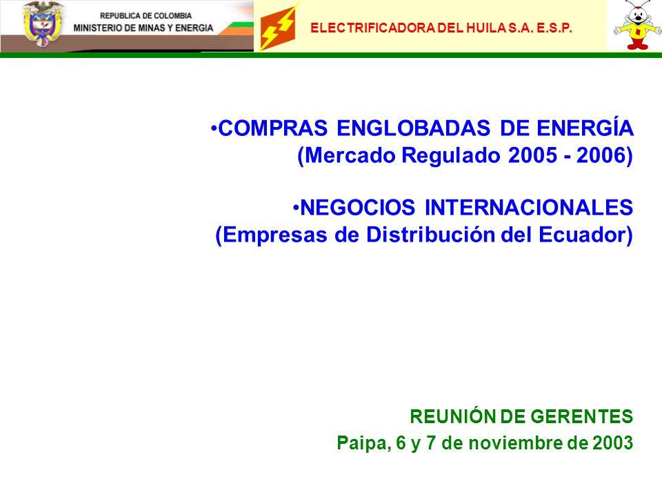 ELECTRIFICADORA DEL HUILA S.A. E.S.P. COMPRAS ENGLOBADAS DE ENERGÍA (Mercado Regulado 2005 - 2006) NEGOCIOS INTERNACIONALES (Empresas de Distribución