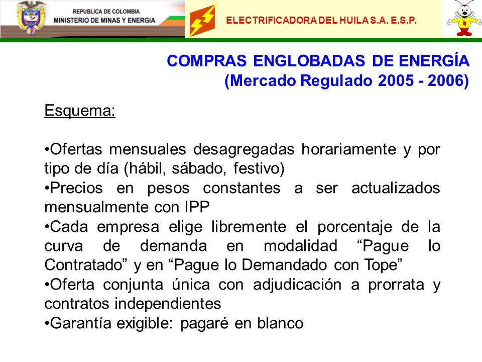 ELECTRIFICADORA DEL HUILA S.A. E.S.P. COMPRAS ENGLOBADAS DE ENERGÍA (Mercado Regulado 2005 - 2006) Esquema: Ofertas mensuales desagregadas horariament