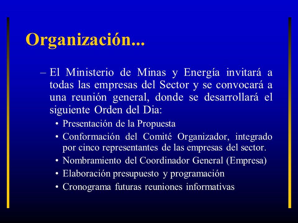 Organización... –El Ministerio de Minas y Energía invitará a todas las empresas del Sector y se convocará a una reunión general, donde se desarrollará