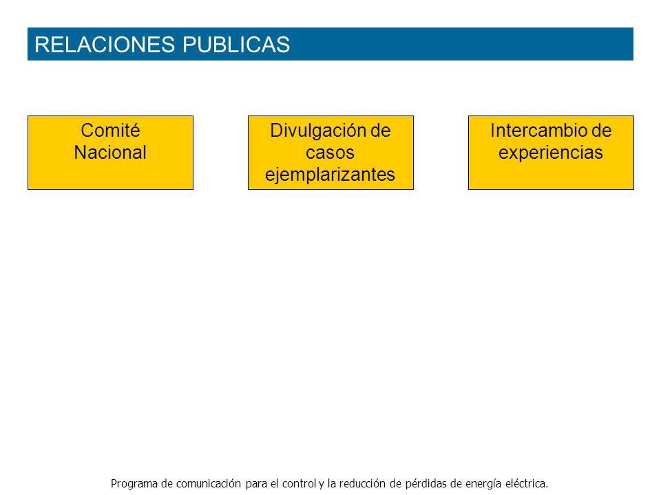 Programa de comunicación para el control y la reducción de pérdidas de energía eléctrica. Intercambio de experiencias Comité Nacional RELACIONES PUBLI