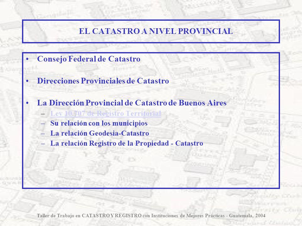 EL CATASTRO A NIVEL PROVINCIAL Consejo Federal de Catastro Direcciones Provinciales de Catastro La Dirección Provincial de Catastro de Buenos Aires –L