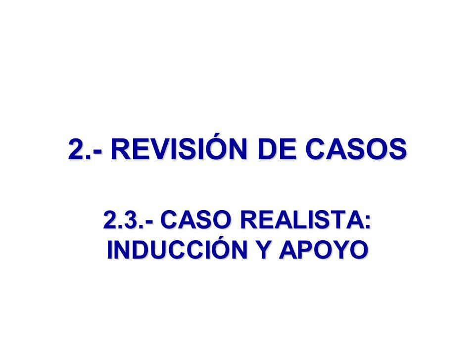 2.- REVISIÓN DE CASOS 2.3.- CASO REALISTA: INDUCCIÓN Y APOYO