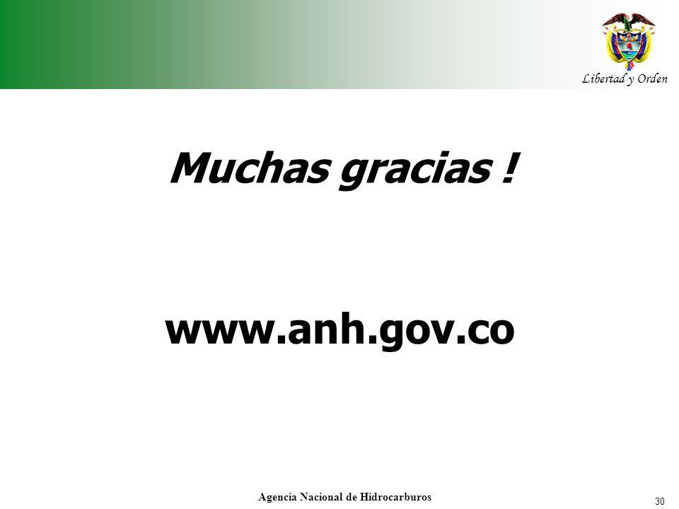 30 Libertad y Orden Agencia Nacional de Hidrocarburos www.anh.gov.co Muchas gracias !