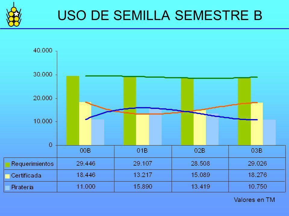 USO DE SEMILLA SEMESTRE B Valores en TM