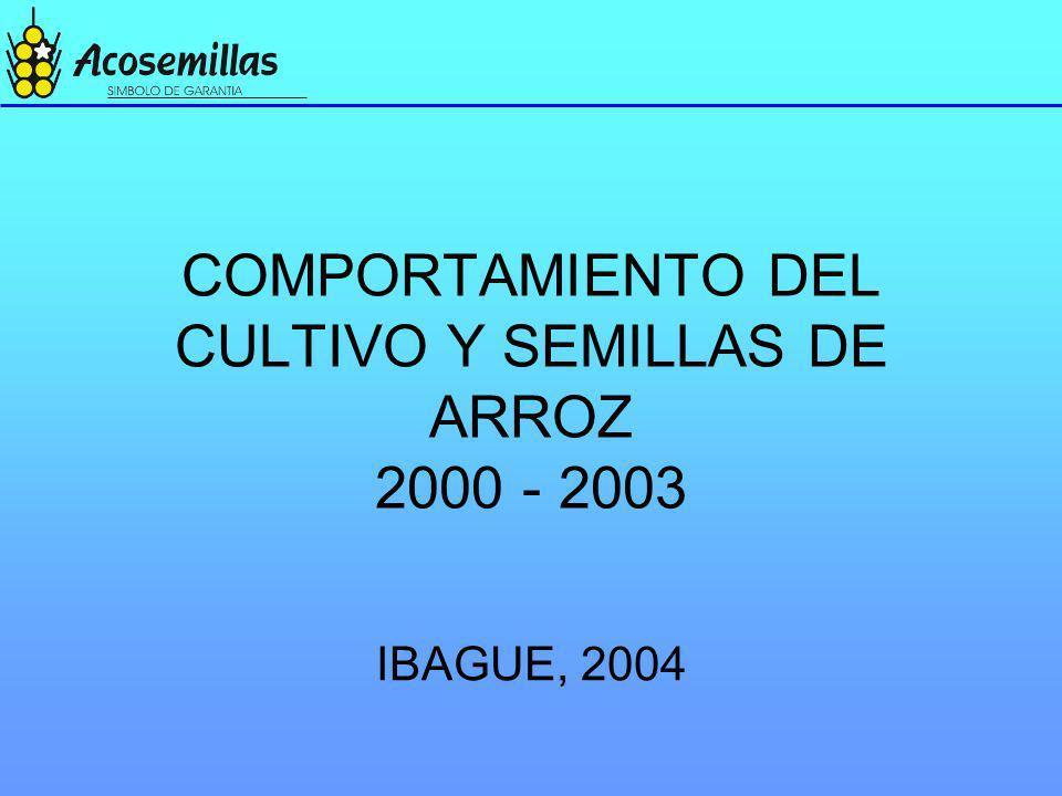 COMPORTAMIENTO DEL CULTIVO Y SEMILLAS DE ARROZ 2000 - 2003 IBAGUE, 2004