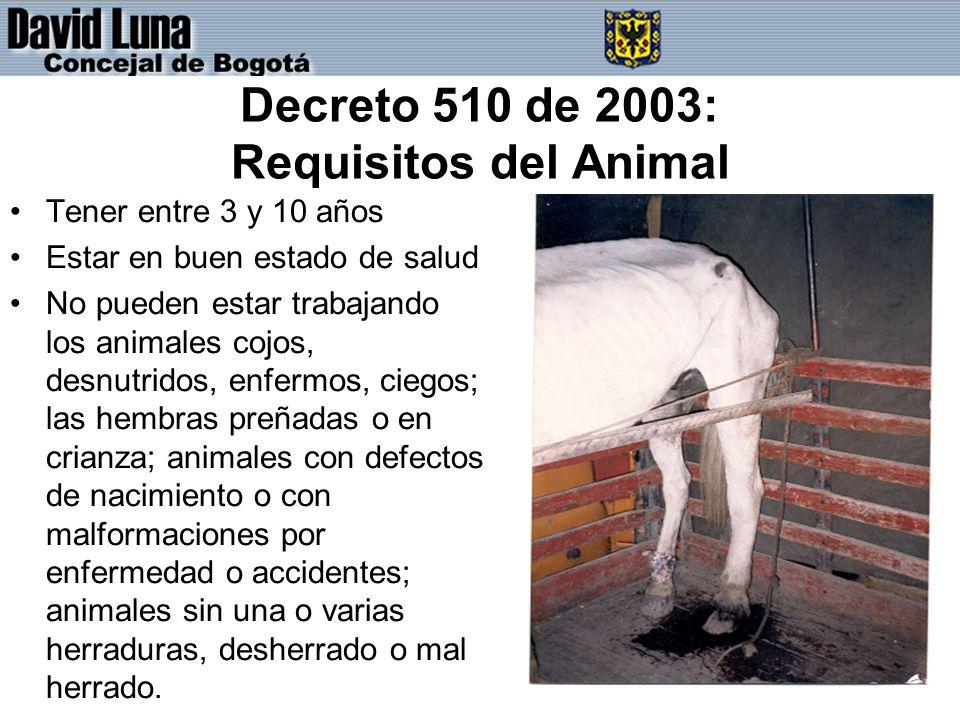 Decreto 510 de 2003: Requisitos del Animal Tener entre 3 y 10 años Estar en buen estado de salud No pueden estar trabajando los animales cojos, desnutridos, enfermos, ciegos; las hembras preñadas o en crianza; animales con defectos de nacimiento o con malformaciones por enfermedad o accidentes; animales sin una o varias herraduras, desherrado o mal herrado.