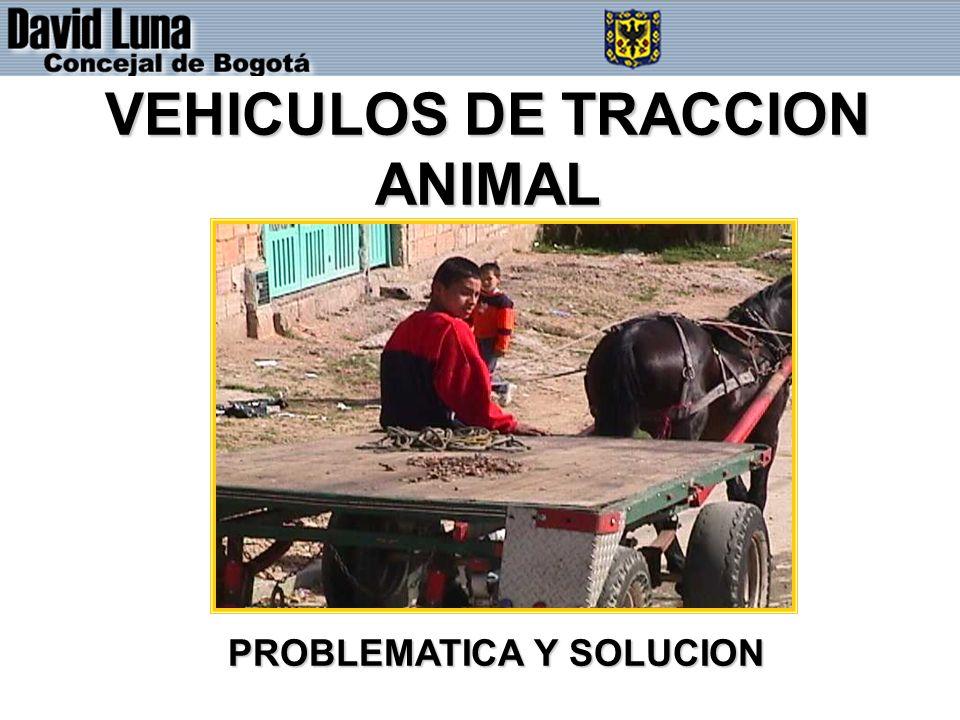 VEHICULOS DE TRACCION ANIMAL PROBLEMATICA Y SOLUCION
