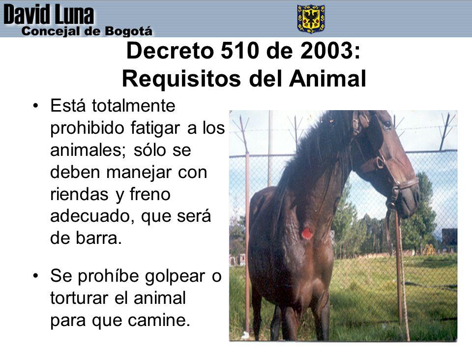 Decreto 510 de 2003: Requisitos del Animal Está totalmente prohibido fatigar a los animales; sólo se deben manejar con riendas y freno adecuado, que será de barra.