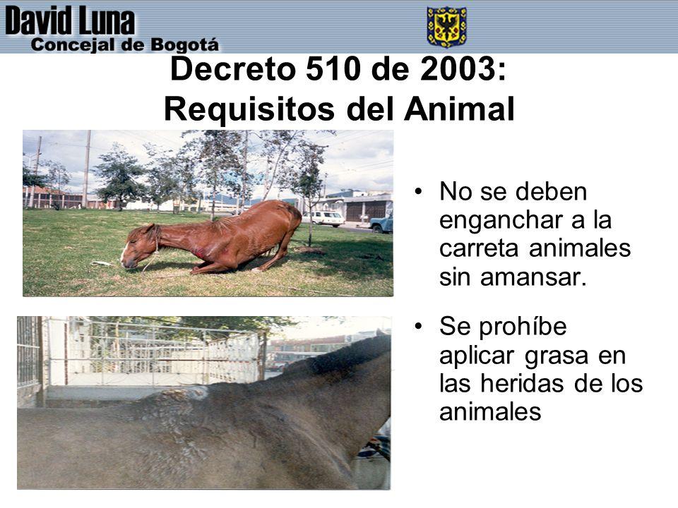 Decreto 510 de 2003: Requisitos del Animal No se deben enganchar a la carreta animales sin amansar.