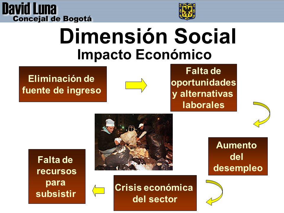 Dimensión Social Aumento del desempleo Falta de oportunidades y alternativas laborales Eliminación de fuente de ingreso Crisis económica del sector Falta de recursos para subsistir Impacto Económico