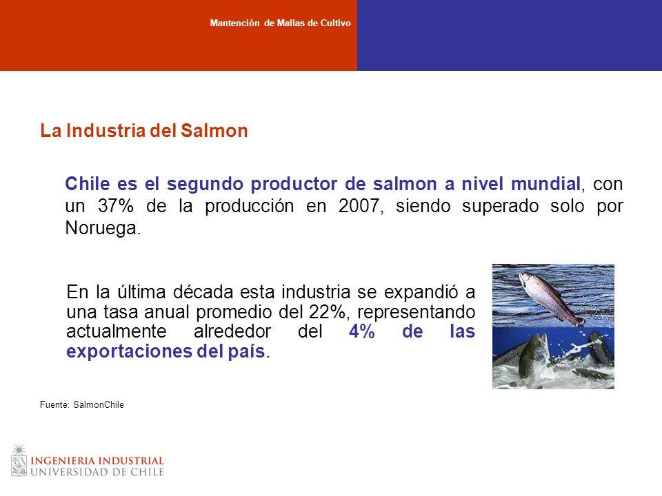 La Industria del Salmon Chile es el segundo productor de salmon a nivel mundial, con un 37% de la producción en 2007, siendo superado solo por Noruega