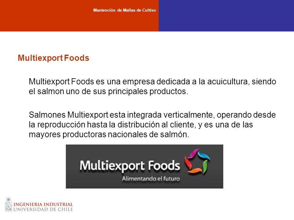 Multiexport Foods Multiexport Foods es una empresa dedicada a la acuicultura, siendo el salmon uno de sus principales productos. Salmones Multiexport
