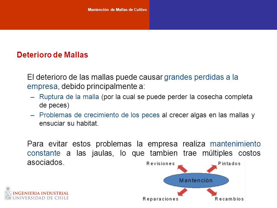 Deterioro de Mallas El deterioro de las mallas puede causar grandes perdidas a la empresa, debido principalmente a: –Ruptura de la malla (por la cual
