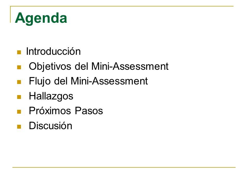 Agenda Introducción Objetivos del Mini-Assessment Flujo del Mini-Assessment Hallazgos Próximos Pasos Discusión