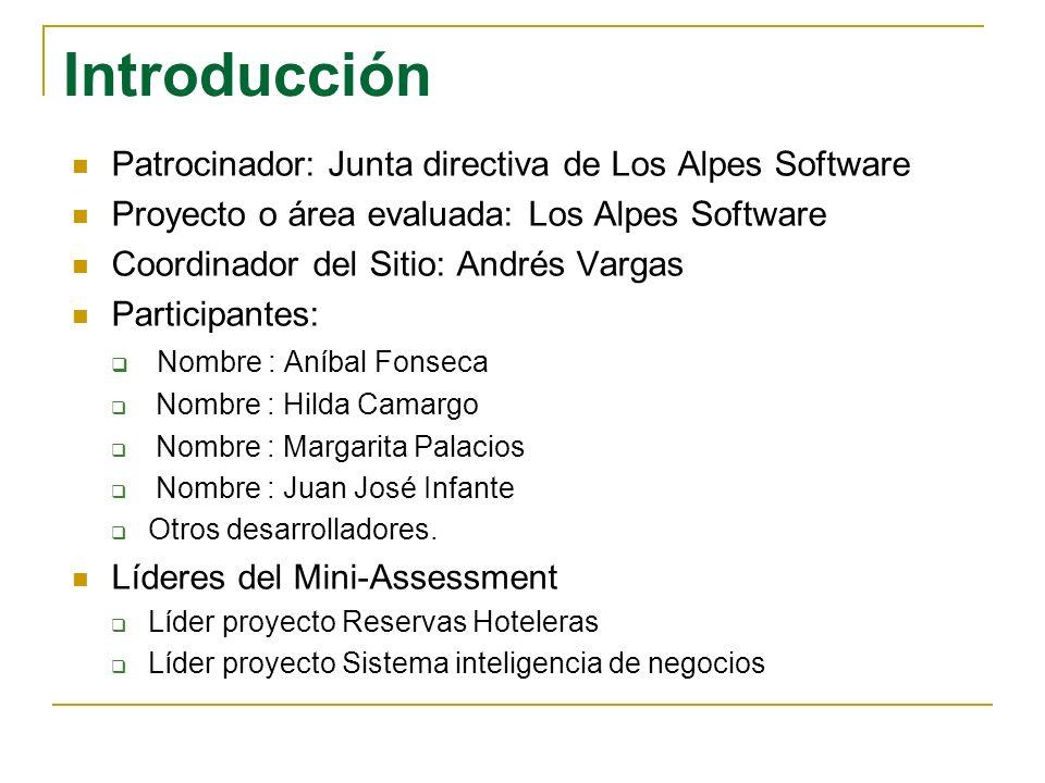 Introducción Patrocinador: Junta directiva de Los Alpes Software Proyecto o área evaluada: Los Alpes Software Coordinador del Sitio: Andrés Vargas Par