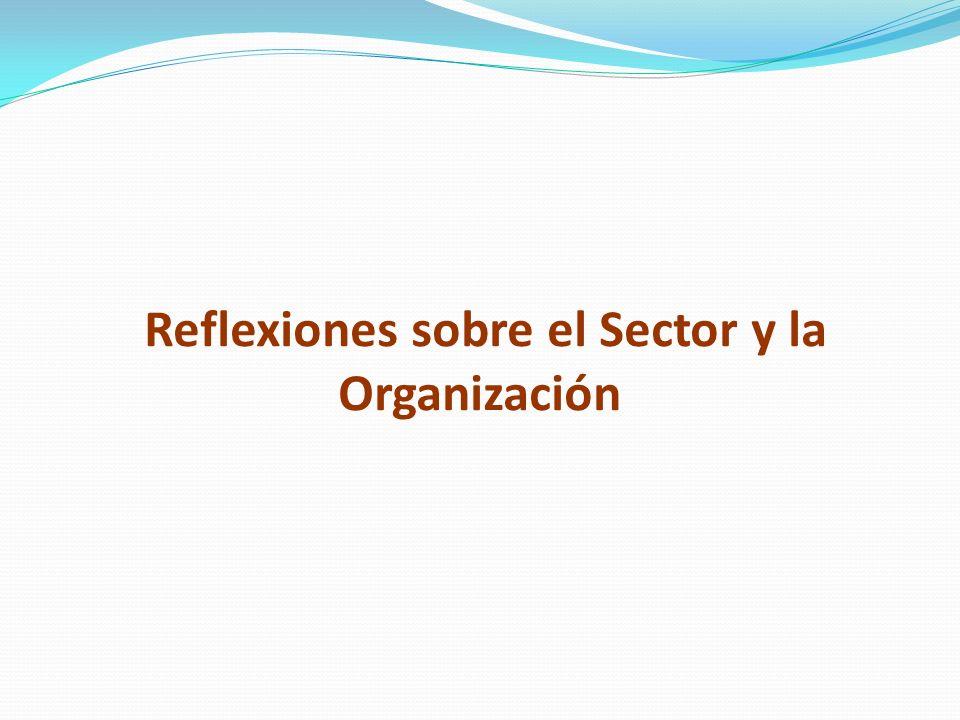 Reflexiones sobre el Sector y la Organización