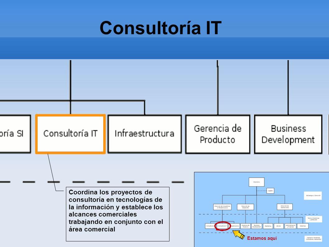 Consultoría IT Estamos aquí Coordina los proyectos de consultoría en tecnologías de la información y establece los alcances comerciales trabajando en