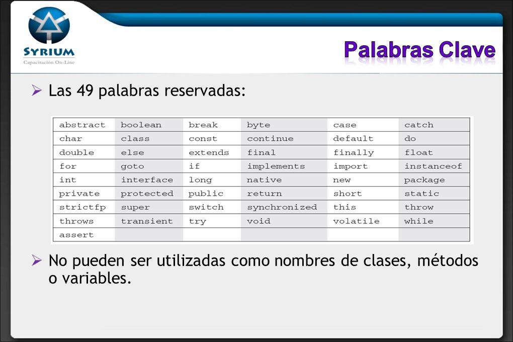Las 49 palabras reservadas: No pueden ser utilizadas como nombres de clases, métodos o variables.