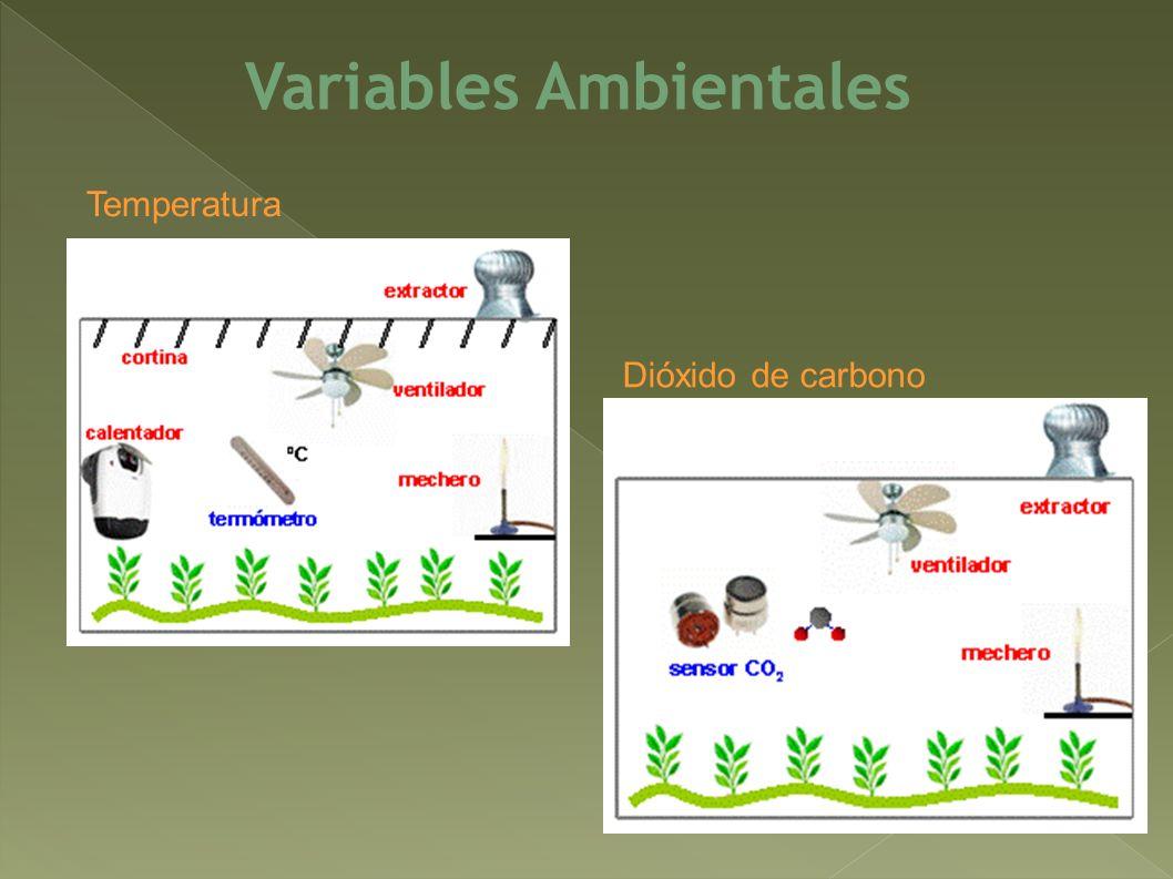 Variables Ambientales Temperatura Dióxido de carbono