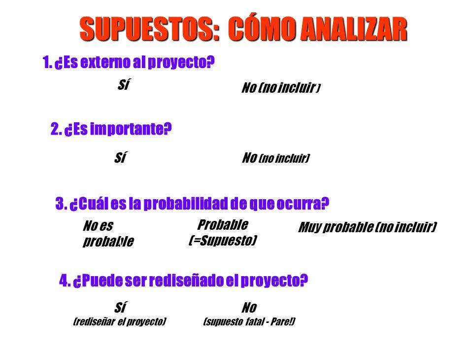 SUPUESTOS: CÓMO ANALIZAR 3. ¿Cuál es la probabilidad de que ocurra? No es probable Probable (=Supuesto) Muy probable (no incluir) 4. ¿Puede ser redise