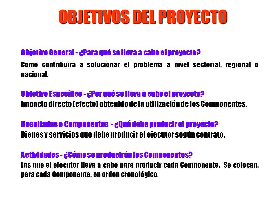 OBJETIVOS DEL PROYECTO Objetivo General - ¿Para qué se lleva a cabo el proyecto? Cómo contribuirá a solucionar el problema a nivel sectorial, regional