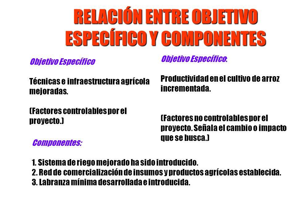 RELACIÓN ENTRE OBJETIVO ESPECÍFICO Y COMPONENTES Objetivo Específico Técnicas e infraestructura agrícola mejoradas. (Factores controlables por el proy