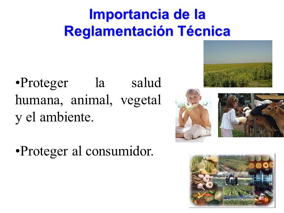 Importancia de la Reglamentación Técnica Proteger la salud humana, animal, vegetal y el ambiente. Proteger al consumidor.