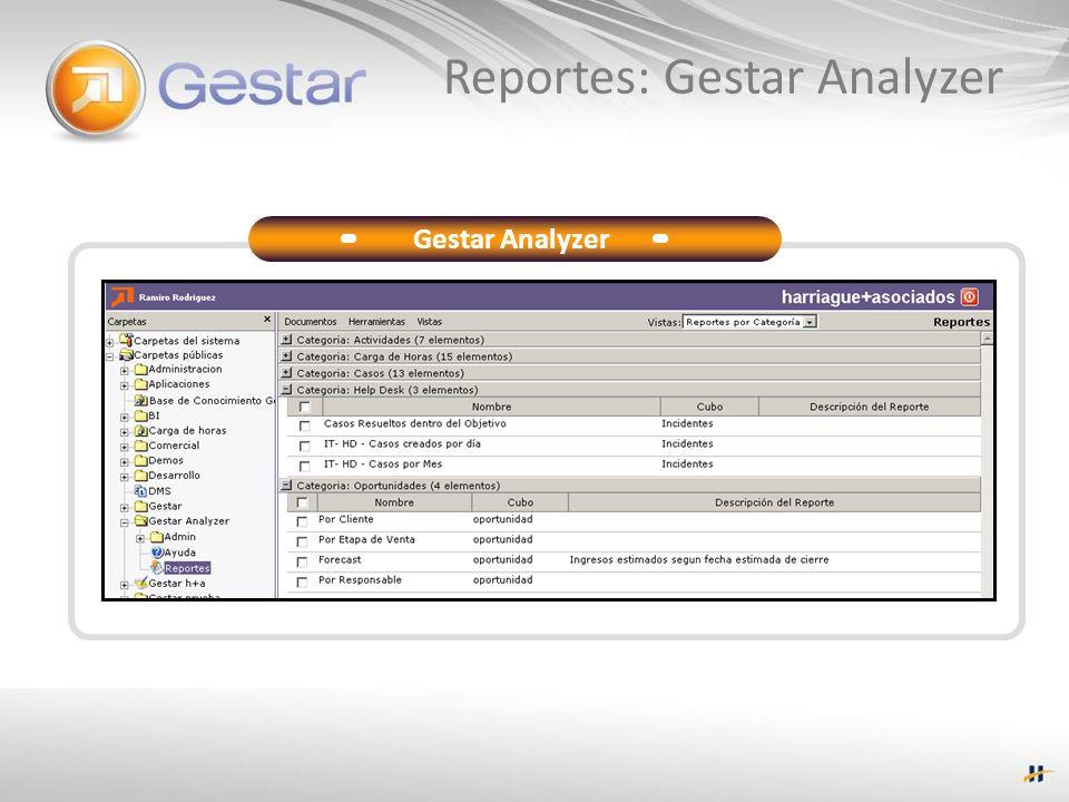 Reportes: Gestar Analyzer Gestar Analyzer