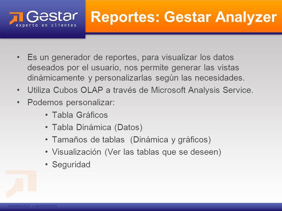 Reportes: Gestar Analyzer Es un generador de reportes, para visualizar los datos deseados por el usuario, nos permite generar las vistas dinámicamente
