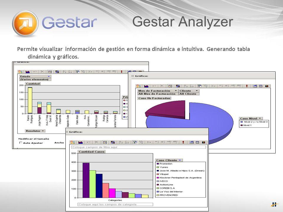 Permite visualizar información de gestión en forma dinámica e intuitiva. Generando tabla dinámica y gráficos. Gestar Analyzer