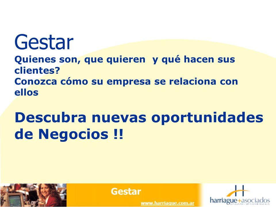 Gestar www.harriague.com.ar Gestar Quienes son, que quieren y qué hacen sus clientes.