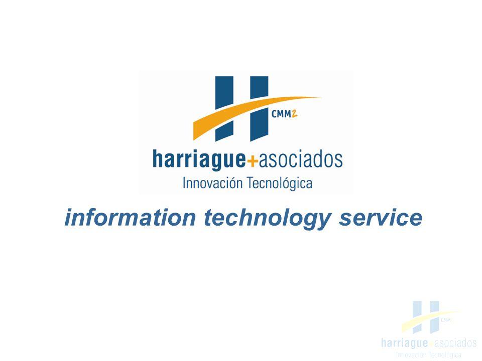 information technology service