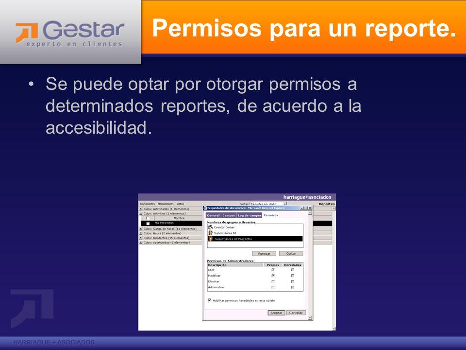Permisos para un reporte. Se puede optar por otorgar permisos a determinados reportes, de acuerdo a la accesibilidad.