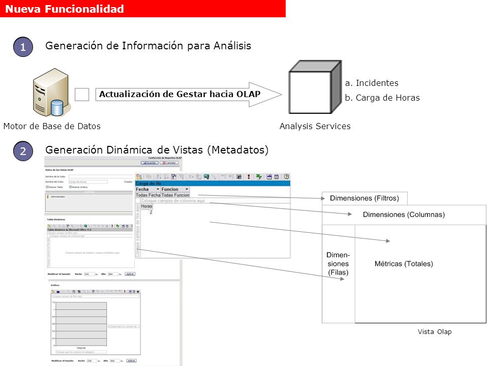 Nueva Funcionalidad 1 1 Generación de Información para Análisis 1 2 Generación Dinámica de Vistas (Metadatos) Vista Olap Actualización de Gestar hacia