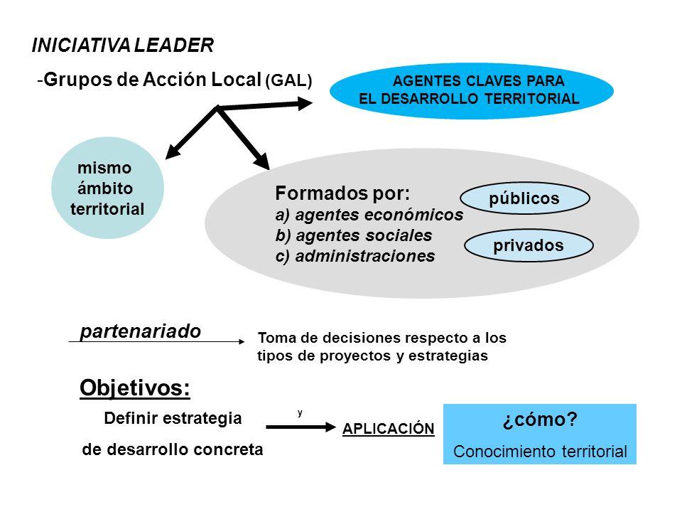 INICIATIVA LEADER -Grupos de Acción Local (GAL) AGENTES CLAVES PARA EL DESARROLLO TERRITORIAL Formados por: a) agentes económicos b) agentes sociales
