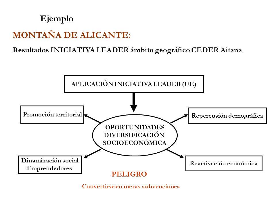 Ejemplo MONTAÑA DE ALICANTE: Resultados INICIATIVA LEADER ámbito geográfico CEDER Aitana APLICACIÓN INICIATIVA LEADER (UE) OPORTUNIDADES DIVERSIFICACI