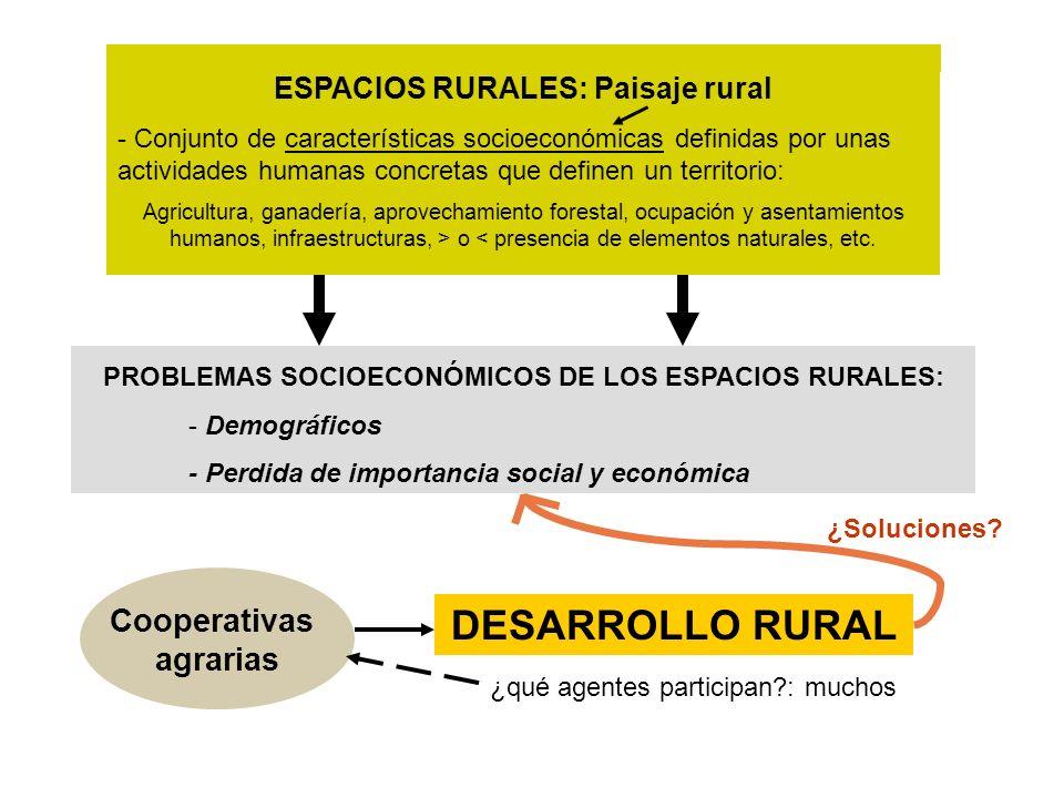 ESPACIOS RURALES: Paisaje rural - Conjunto de características socioeconómicas definidas por unas actividades humanas concretas que definen un territor