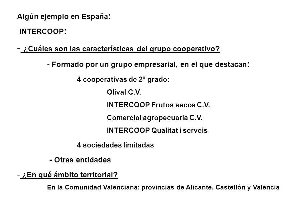 Algún ejemplo en España : INTERCOOP : - ¿Cuáles son las características del grupo cooperativo? - Formado por un grupo empresarial, en el que destacan