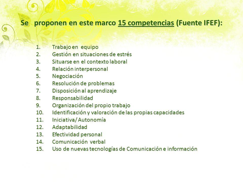 Se proponen en este marco 15 competencias (Fuente IFEF): 1.Trabajo en equipo 2.Gestión en situaciones de estrés 3.Situarse en el contexto laboral 4.Re