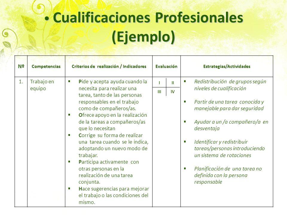 Cualificaciones Profesionales (Ejemplo) Cualificaciones Profesionales (Ejemplo) NºCompetencias Criterios de realización / Indicadores EvaluaciónEstrat