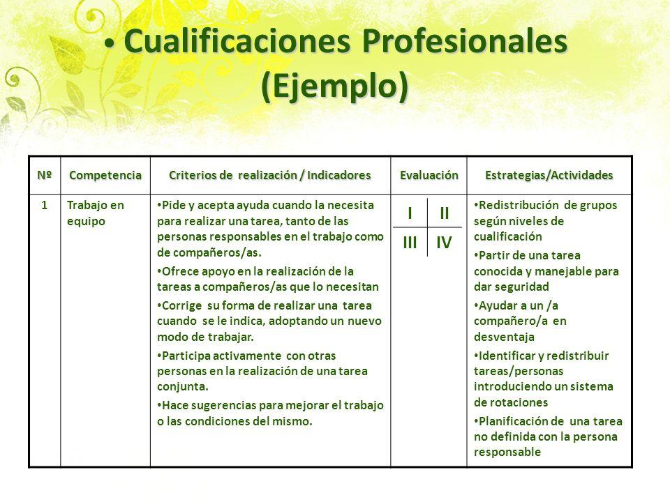 Cualificaciones Profesionales (Ejemplo) Cualificaciones Profesionales (Ejemplo) NºCompetencia Criterios de realización / Indicadores EvaluaciónEstrate